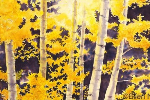 Aspen Series – Illumination